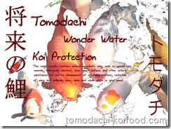 Magic White Powder von Tomodachi